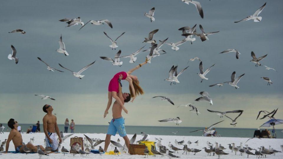 5127605-R3L8T8D-1000-Dancers-Among-Us-in-Sarasota-Danielle-Brown62.jpg