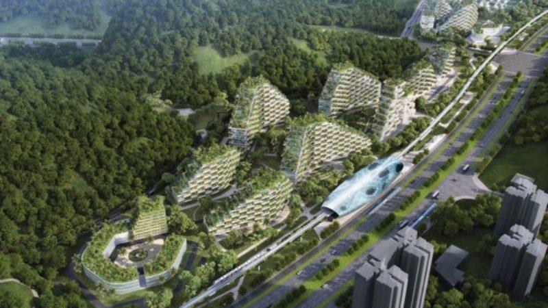 У Китаї почали зводити перше у світі «Лісове місто»