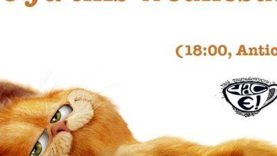 Котики, всех ждём на …