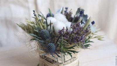 Рослини у нашому домі – що порадите від стресу?